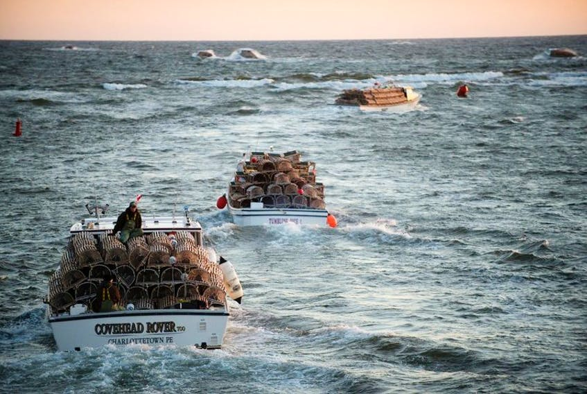 <p>Boats laden with lobster traps leave Covehead Harbour on the north shore of P.E.I at dawn Friday May 8, 2015 for the opening of the season that was delayed eight days due to ice conditions in the Gulf of St Lawrence. The first lobsters should be landed by Saturday and just in time for the traditional Mother's Day dinners of lobster.</p>