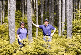 Peter and Pat Spicer, Seven Gulches Forest Products, Spencer's Island. PHOTO CREDIT: File photo