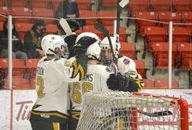 In this file photo from March 2021, members of the Eskasoni Eagles celebrate after scoring a goal during Nova Scotia Junior Hockey League action at the Membertou Sport and Wellness Centre. JEREMY FRASER/CAPE BRETON POST