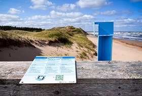 A coastie cell phone cradle at Brackley Beach in P.E.I. allows visitors to take a photo of the coast and share it with Parks Canada to allow officials to monitor changes to the coastline.