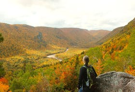 Parks Canada is looking for feedback on its 10-15 year draft management plan for Cape Breton Highlands National Park.