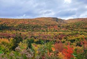 The splendor of Nova Scotia's fall colours. Kathy Gould photo.