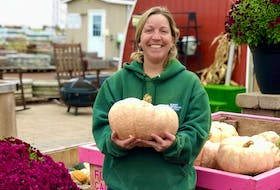 Kool Breeze Farms greenhouse manager Stephanie Simmons displays one of many pink pumpkins grown by the farm. The pumpkins were grown in support of the P.E.I. division of the Canadian Cancer Society for breast cancer awareness month.