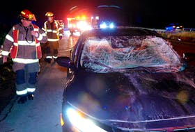 Four people escaped serious injuries following a moose-vehicle collision Saturday night.