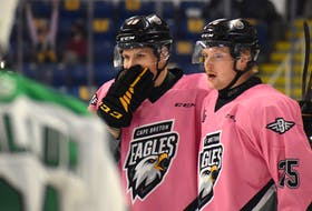 Cape Breton Eagles teammates Ivan Ivan, left, and Dawson Stairs celebrate after Stairs scored the first goal of the game against the Val-d'Or Foreurs during Quebec Major Junior Hockey League action at Centre 200, Friday. JEREMY FRASER/CAPE BRETON POST.