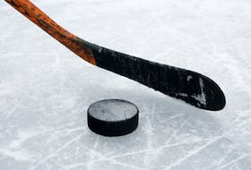 The Membertou Jr. Miners swept a two-road trip by defeating the Brookfield Elks and Valley Maple Leafs, while the Strait Pirates downed the Eskasoni Eagles Friday in Nova Scotia Junior Hockey Action. — CONTRIBUTED