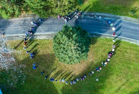 Members of L'Arche Cape Breton form a heart shape around the tree set to be donated as part of Nova Scotia's Tree for Boston tradition.