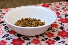 All cat food might all look the same to you, but tell that to your cat. CONTRIBUTED