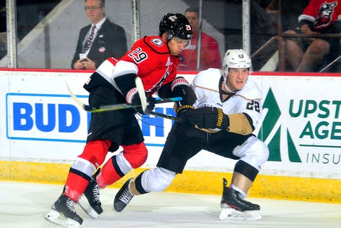 Newfoundland Growlers defenceman Noel Hoefenmayer (22) fends off Adirondack Thunder forward Robbie Payne during an ECHL game in Glens Falls, N.Y., on Saturday, The Growlers won 3-2, giving them a 3-0 record heading into a matchup with the Trois Rivieres Lions tonight. — Adirondack Thunder photo/Twitter