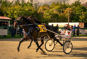 Johnnie Jack and Ryan Campbell stepped to his fourth win in a row in 1:57.3 on Saturday at Northside Downs in North Sydney. PHOTO CONTRIBUTED/TANYA ROMEO