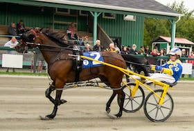 JJ Scarlett is shown during harness racing action at Northside Downs in North Sydney earlier this season. The Inverness-owned horse will start in the No. 8 spot during the Atlantic Breeders Crown final at Charlottetown Driving Park, Sunday. PHOTO CONTRIBUTED/TANYA ROMEO.