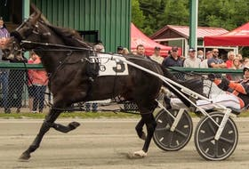Rotten Ronnie and Redmond Doucet Jr. are shown in action at Northside Downs in North Sydney earlier this season. Rotten Ronnie and Doucet are among the favourites in the three-year-old colt category heading into the Atlantic Breeders Crown in Charlottetown, P.E.I. this weekend. PHOTO CONTRIBUTED/TANYA ROMEO.
