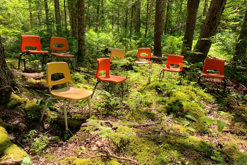 A mixed wood forest has become the outdoor classroom of the Pictou County Forest School in Meadowville.