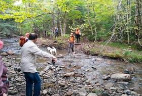 The Six Mile Brook hike had people crossing the brook.