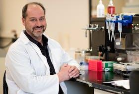 Rod Russell is an expert in viral immunology at Memorial University. (Rich Blenkinsopp)