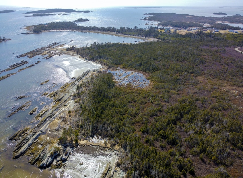 An aerial photo of the coastline at Owls Head provincial park near Little Harbour, N.S., Wednesday March 31, 2021. - Tim Krochak • The Chronicle Herald