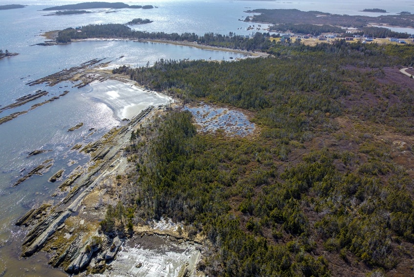 An aerial photo of the coastline at Owls Head provincial park near Little Harbour, N.S., Wednesday March 31, 2021.