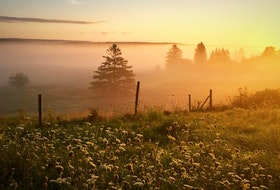"""Fog in the hollow, a fine day to follow."" 