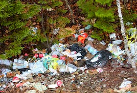 """""""There's no reason for doing this,"""" said Const. Arnold McKinnon, who noticed this pile of illegally dumped rubbish in east-end Sydney. IAN NATHANSON/CAPE BRETON POST"""