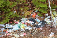 """There's no reason for doing this,"" said Const. Arnold McKinnon, who noticed this pile of illegally dumped rubbish in east-end Sydney. IAN NATHANSON/CAPE BRETON POST"