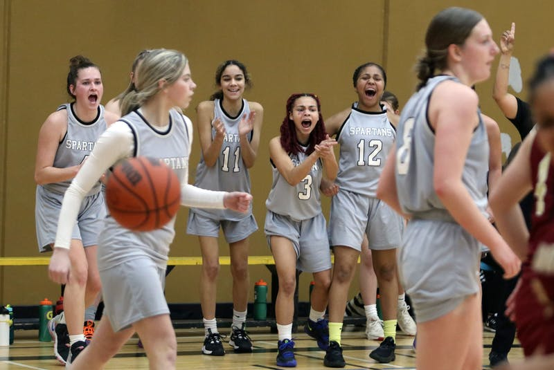 The Dartmouth bench erupts after the Spartans scored a basket against the Citadel Phoenix during third-quarter action of the Capital Region girls' basketball championship Tuesday at Dartmouth High. - Eric Wynne / The Chronicle Herald - Eric Wynne