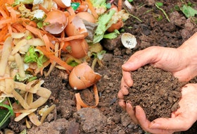 From organic food to composted scraps, heaping these on your garden bed will save your back.