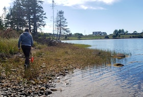 A Helping Nature Heal steward measures a shoreline. - Photo Contributed.