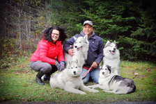 Windsor RCMP Cst. Richard Collins with wife, Deborah and huskies Tazer, Ace, Blaze and Karma. - Photo Courtesy Sherril Inglis Photography.