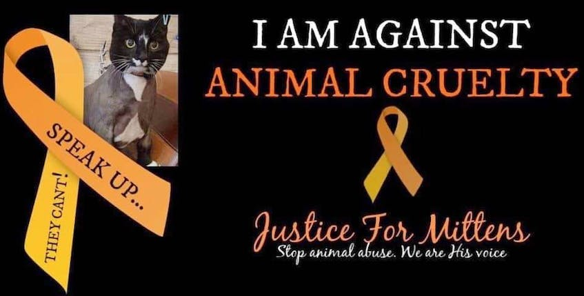 The killing of Mittens the Cat led to much outrage, a focus on animal cruelty, demands for justice, and action, including a vigil organized by the SPCA. — Facebook - Facebook