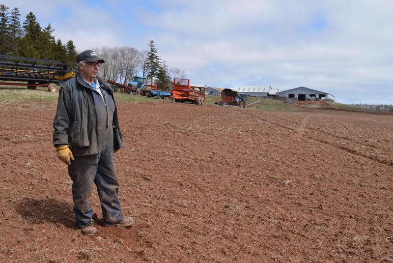 Vernon Campbell of P.E.I.'s Mull Na Beinne Farms Ltd. stands in a field that produced alfalfa hay last year. Campbell has replaced a mouldboard plow with cultivators that reduce soil tillage. These cultivator leaves some sod on the surface, which helps prevent wind and water soil erosion. Replacing moldboard plows is one practice that has become common in P.E.I. as farmers begin adopting best practices to improve soil health, following a year of drought-like conditions in 2020. - Alison Jenkins/Local Journalism Initiative Reporter