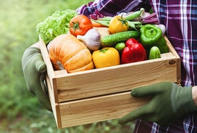 Be sure to plant the vegetables you most like to eat.