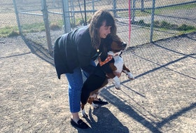 Sonya Yurchesyn was hanging out with her three-year-old basset hound Gus on Wednesday afternoon at the off-leash dog park at the Open Hearth Park in Sydney.