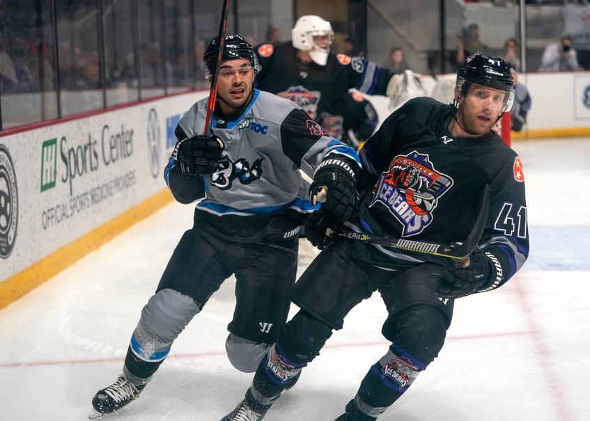 Cole Reginato of the Huntsville Havoc, left, battles for position with Sean Giles of the Knoxville Ice Bears during Southern Professional Hockey League action in Huntsville, Ala., recently. The Albert Bridge product has appeared in seven games with the team and has one goal to date. CONTRIBUTED • HUNTSVILLE HAVOC