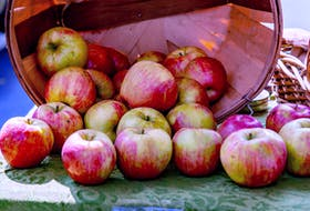 Apple season has arrived, bringing plenty of opportunity for delicious baking.