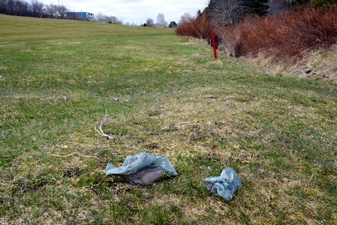 Bags of dog feces sit on a fairway at the Baly Haly golf club Wednesday morning.   Keith Gosse/The Telegram