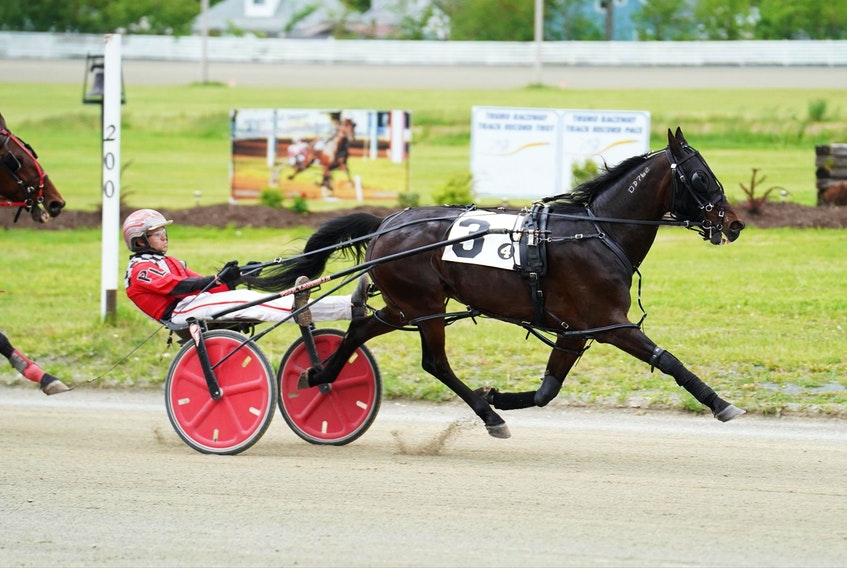 Paul Langille races with Jazzmo. He said he is looking forward to being outside with the horses. Photo by Kyle Burton.