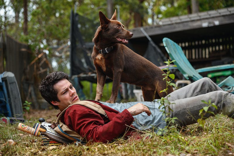 Joel (Dylan O'Brien) and a dog named Boy team up to make their way across a monster-infested America. – Paramount Pictures - Contributed