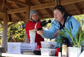 Laurie Robinson, right, shows the audience her soil-plug, used for starting seeds without wasting any plastic or paper.