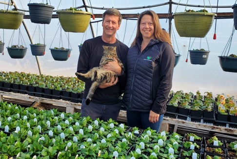 Jennifer and Chris Vriens, along with their cat Bear, own John's Greenhouse in Summerside, P.E.I. They have been preparing for another busy gardening season due to COVID-19.