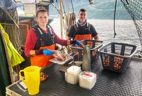 Courtenay, B.C. fisher Melissa Collier, left, harvests prawns, salmon and scallops, and partnered with community-supported fishery Skipper Otto to sell some of her family's catch.