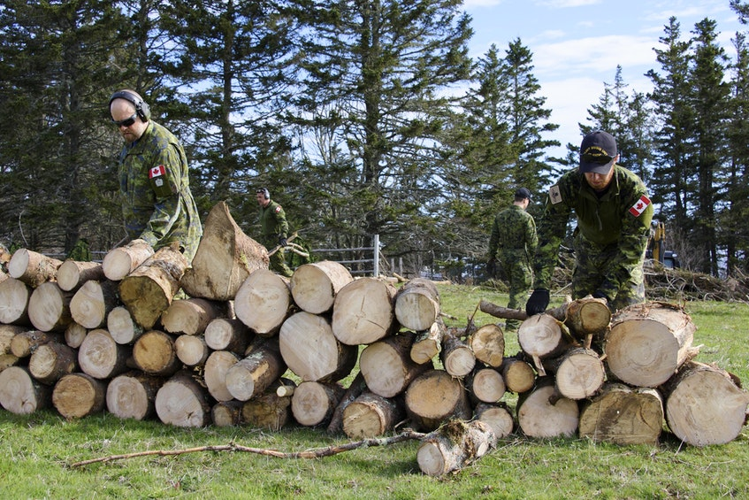 The EOD team cleans up brush and stacks logs for removal in preparation for removing the UXO from the pond. PHOTO: Master Corporal Ian Thompson, Canadian Armed Forces