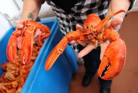 The spring lobster season begins next week in many parts of Atlantic Canada. And the season is starting with higher-than-usual prices for fish harvesters.