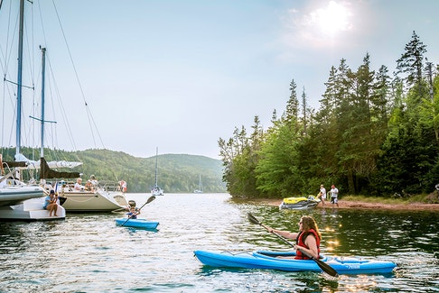 Businesses in Nova Scotia's hard-hit tourism sector are benefiting from a program that can provide up to $5,000 in digital marketing services.