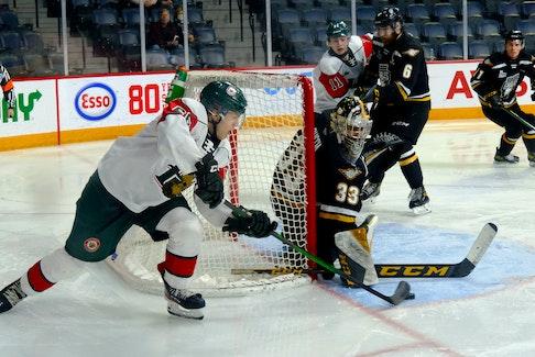 Halifax Mooseheads player Zachary L'Heureux (66) tries a wraparound shot against the Cape Breton Eagles goalie Nicolas Ruccia in Halifax on Friday. TIM KROCHAK/SALTWIRE NETWORK
