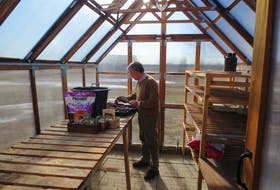 Mark Cullen is glad to be out in his greenhouse getting a jumpstart on the growing season and figuring out the gardening that can be done in the early part of spring.