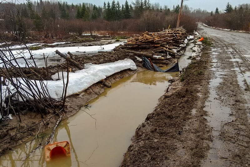 The field of a clearcut near West Lake Ainslie, on March 28, 2021. CONTRIBUTED