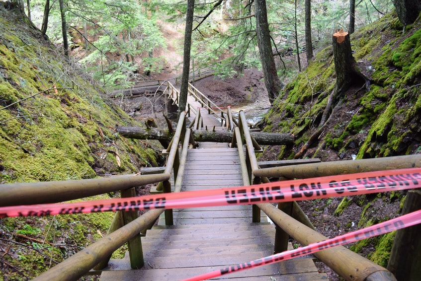 Tape warned walkers not to take the stairs - the entrance to the wishing well from the upper portion off of Lewis Road was still accesible. - Chelsey Gould