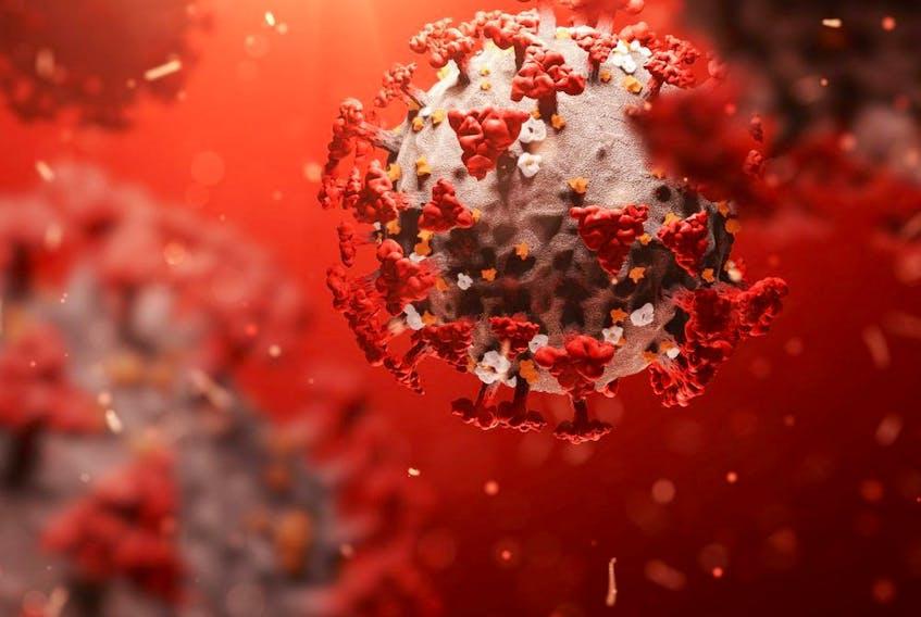 The coronavirus COVID-19.