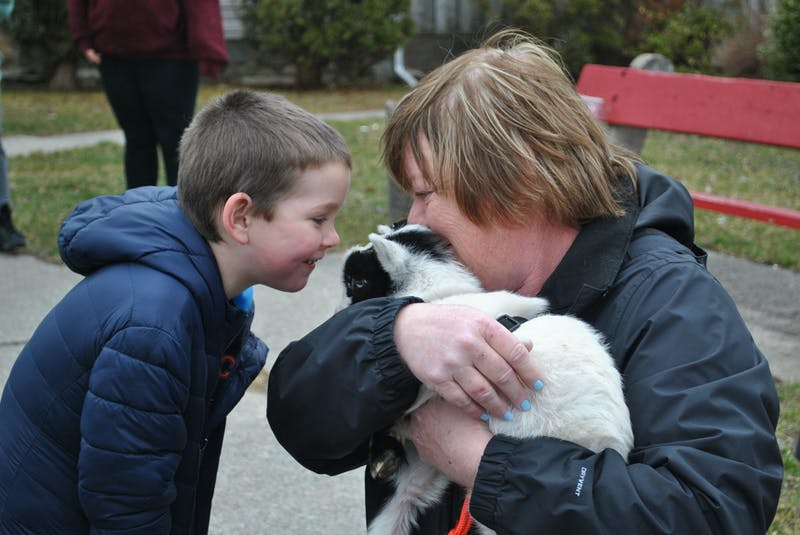 A little boy is all smiles as he visits with one of Katie Peacock's miniature goats in downtown Shelburne on March 28. KATHY JOHNSON  - Kathy Johnson