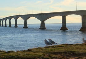 Thousands of people cross the Confederation Bridge every year to visit Canada's smallest province. In the P.E.I. legislature this week, Premier Dennis King has been questioned on whether fully vaccinated incoming travellers could avoid the 14-day self-isolation period.